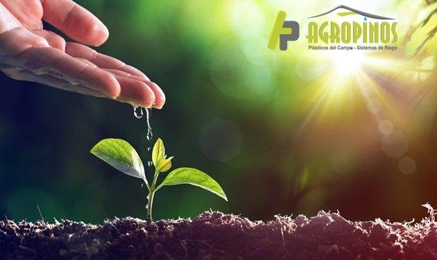 Mejore la calidad de sus cultivos con fertilizantes orgánicos