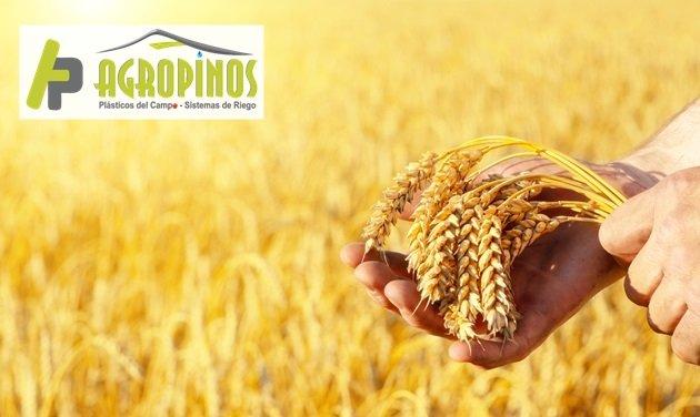 Agropinos le enseña como proteger sus cultivos de los cambios climáticos