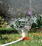 Aprenda a no desperdiciar el agua de su invernadero