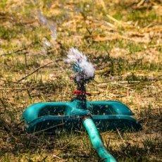 Factores importantes para la creación de su invernadero | Agropinos