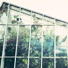 Las telas de invernadero son de mucha importancia para sus cultivos.
