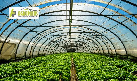 Repare el plástico de su invernadero con la cinta adhesiva especial para plásticos que encuentra en Agropinos.