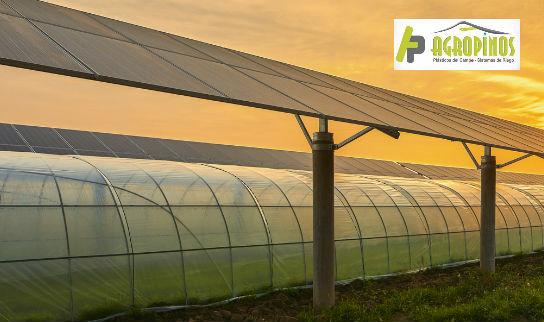 Las geomembranas y polisombras son opciones ideales para proteger sus cultivos antes los efectos nocivos del cambio climático.