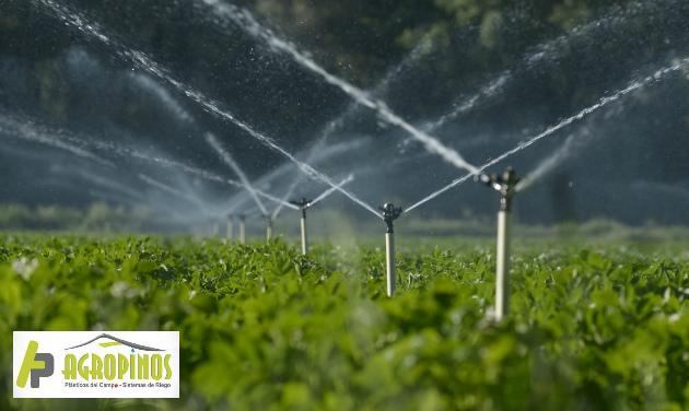 La presión del agua puede ser afectada por un problema dentro del sistema o externo.