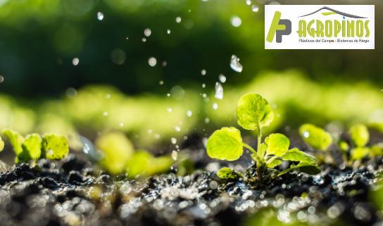 Una de las principales ventajas del sistema de riego por aspersión es su alta eficiencia en comparación con los sistemas tradicionales.