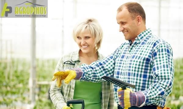 Agropinos le presenta los mejores productos para proteger sus cultivos del invierno