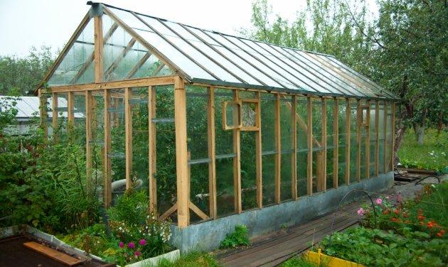 Beneficie su vida y su salud con un invernadero en su propiedad | Agropinos