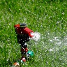 Sistemas de riego de acuerdo a las necesidades de su invernadero