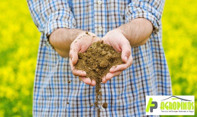 Mantenga los suelos fértiles con Agroinsumos los Pinos