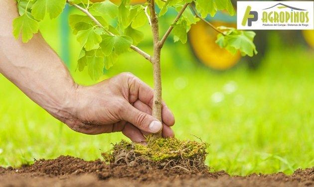 Agricultura responsable y lo que usted debe saber