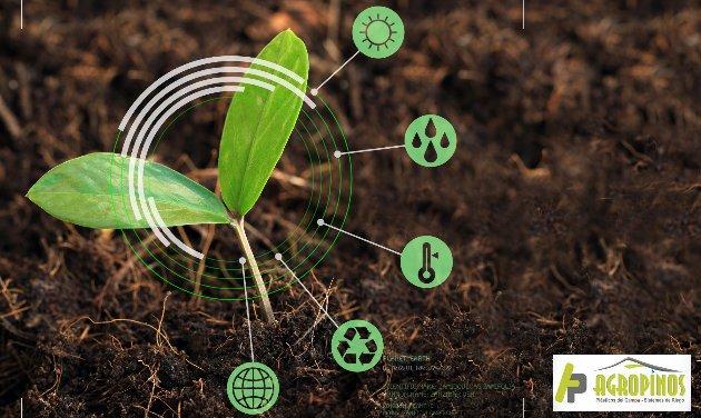 Realice prácticas responsables con el entorno como la agricultura de conservación.