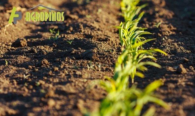 Haga de su suelo más fértil con Agropinos