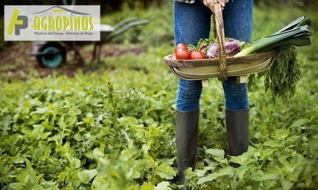 Conozca cómo seguir las buenas prácticas agrícolas