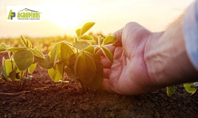 Grandes beneficios de la agricultura agrícola