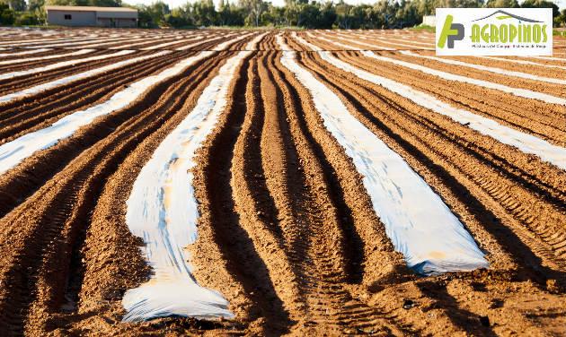 Use estas geomembranas y mejore la calidad de sus cultivos