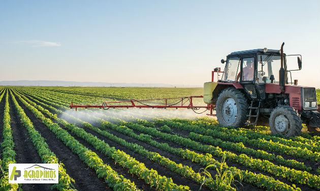 Estudios buscan reducir el uso de herbicidas y fungicidas en los productos para el agro.