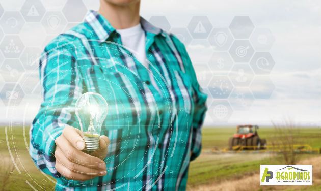 El sector agro le apuesta a una economía sostenible impulsando iniciativas de campesinos emprendedores.
