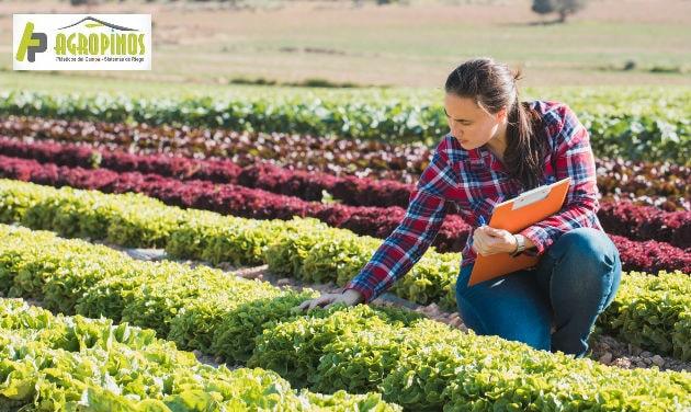El método integrado de plagas es un esquema que le garantizará cultivos sostenibles.