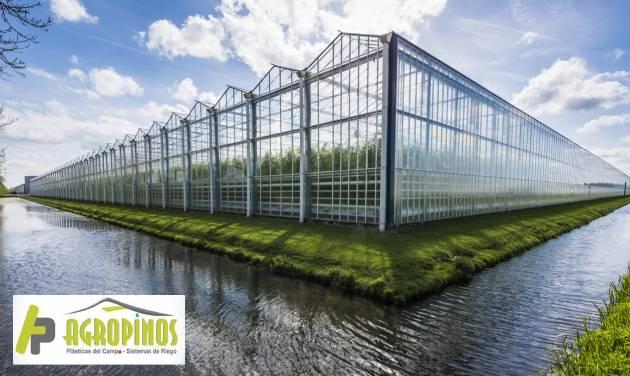 invernaderos para cultivos