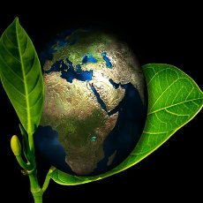 Agropinos le invita a cuidar de la Tierra