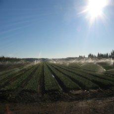 No le tema a las sequías