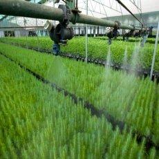 Vive la Agroferia en Bucaramanga con los expertos del sector