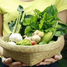 Alimentos indicados para tu cosecha