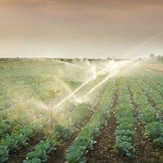 Sistemas de riego para agricultores en la sabana de Bogotá