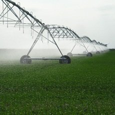 Encuentre productos de alta calidad para el agro