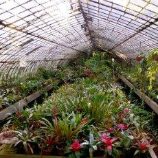 Los mejores productos para proteger su invernadero