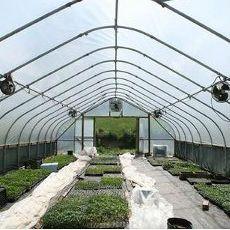 Sistemas de ventilación para invernaderos